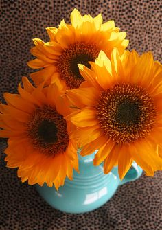 pretty yellow sunflowers in turquoise fiestaware pitcher
