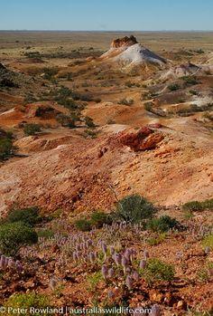 Landscapes, Australia, Beautiful, Paisajes, Scenery