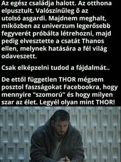 Thor, Loki, Marvel Memes, Marvel Avengers, Really Funny Memes, Chris Hemsworth, Sarcasm, Fun Facts, Funny Pictures