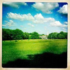 Hilly Fields, Brockley.