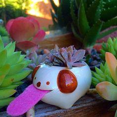 #planters #pottery #pots #flowerpots #homeandgarden #garden #landscape #decor