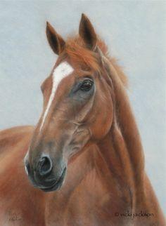 "Vicki Jackson - Fine Art Animal Portraits in Pastel - Artwork - ""Tiny"" Thoroughbred"
