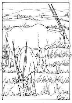 Hydranoid Bakugan Coloring Page