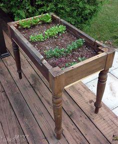 Urban Garden Design Repurposing an old table into a lettuce bed - Five Gardens Today Diy Garden, Garden Care, Garden Planters, Dream Garden, Garden Projects, Garden Landscaping, Terrace Garden, Garden Crafts, Upcycled Garden