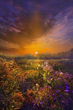 Sunrise in Fields ~ Marvelous Nature Amazing Photography, Landscape Photography, Nature Photography, All Nature, Amazing Nature, Beautiful World, Beautiful Places, Beautiful Sunrise, Nature Pictures