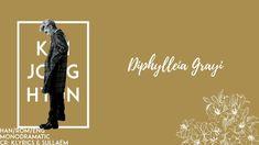 Jonghyun's Diphylleia Grayi w/ lyrics! Credit: klyrics & sullaem Feel free to make (SHINee) requests! Skeleton Flower, Trending Songs, Shinee Jonghyun, Ukulele, Guitar, Beautiful Voice, Korean Music, Play, Tattoos