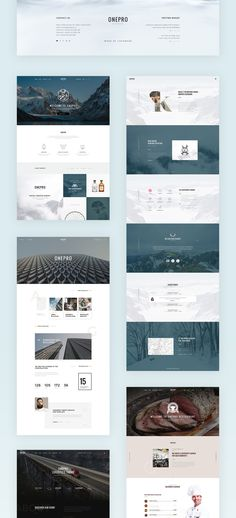Onepro is a clean and trendy PSD template designed with Grid-Based Approach. Can be used for a lot of different stylized websites, like modern corporative pages, blogs, shops, and trendy personal pages.