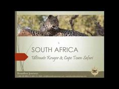 Boundless Journeys South Africa: Ultimate Kruger & Cape Town Webinar - YouTube