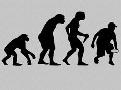 The true story of evolution :)