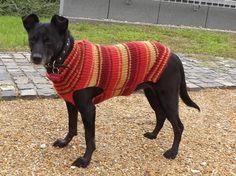 Dog Sweater Hand Knit sweater Custom made dog by PepperPetWear Hand Knitted Sweaters, Dog Sweaters, Hand Knitting, Custom Made, Trending Outfits, Unique Jewelry, Handmade Gifts, Dogs, Etsy