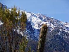 Cordillera Chincolco Chile, Mountain Range, Chili Powder, Chilis