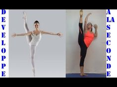 Kinesiological Stretching Techniques Easy Flexibility by Paul Zaichik   EasyFlexibility.com