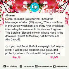 #sunan #prophet_muhammad   Always read #surat_al_mulk in the #quran before you sleep :)