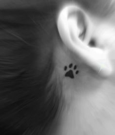 Dog paw tattoo for tigger...maybe front shoulder/chest area...opposite of other tattoo..?