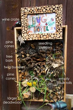 Want more creepy crawlies in your  yard? Build a bug hotel!