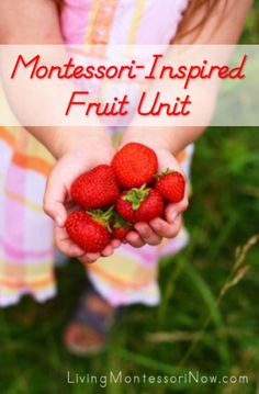 Montessori-Inspired Fruit Unit - links to lots of printables and activities
