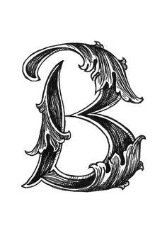 Leaf Script B Art Print
