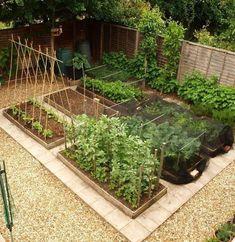 Small Vegetable Garden Layout Ideas
