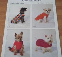 Small Knitted Dog Coat Pattern