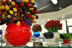 Colour pops with tulips and hyacinths