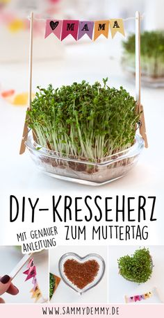 DIY Gifts for Mother's Day: Three ideas to make yourself - Muttertag ❤️ - Blumen Mothers Day Saying, Diy Mothers Day Gifts, Mothers Day Flowers, Mother Day Gifts, Gifts For Mom, Gifts For Kids, Mom Birthday, Birthday Gifts, Birthday Ideas