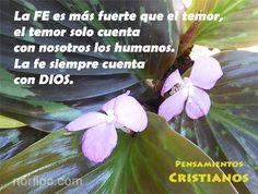 La FE es más fuerte que el temor, el temor solo cuenta con nosotros los humanos, la fe siempre cuenta con DIOS