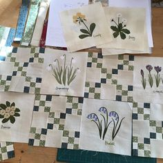 Today I'm putting my Wildflower quilt together. Only two more free blocks to go in our #wildflowerquiltalong2016 - how's your quilt coming along? It's not too late to join my email club (link in profile) and get your twelve wildflowers for free!
