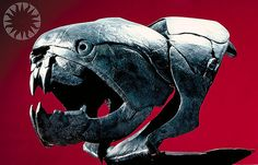 Dunkleosteus- prehistoric armored fish