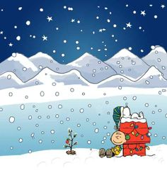 charlie brown and snoopy vianoce :) Peanuts Christmas, Charlie Brown Christmas, Noel Christmas, Winter Christmas, Christmas Cartoons, Xmas Holidays, Peanuts Cartoon, Peanuts Gang, Charlie Brown Und Snoopy