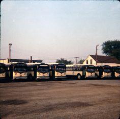 Michaud Bus Lines - Gm Transits