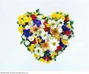 flowers arranged into a heart :)