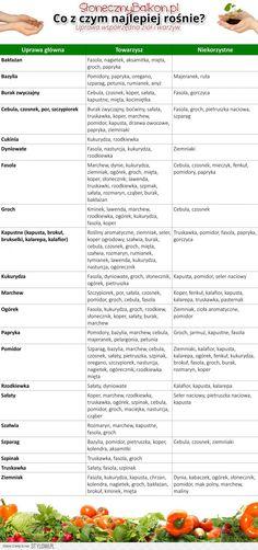 Uprawa współrzędna warzyw i ziół | Słoneczny Balkon na Stylowi.pl