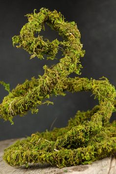 "For a nature inspired Christmas Tree,....Preserved Wired Moss Vine (1/4""-3/4"" thick) 6 feet $3.99"