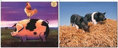 Pig & Rooster Farm Animal Two Set Wall Decor Art Print Po...…