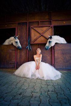photoshooting with horses! www.nikitaspahountis.gr