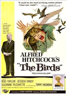 The Birds From Left Alfred Hitchcock Jessica Tandy (Illustration) Tippi Hedren 1963 Movie Poster Masterprint x Jessica Tandy, Horror Movie Posters, Horror Films, Tippi Hedren, Vintage Movies, Vintage Posters, The Birds Movie, Terrifying Movies, Scary Movies