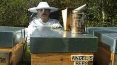 NUEVA COLMENA APADRINADA ANGEL'S BEES