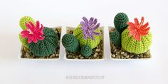 Airali handmade. Where is the Wonderland? Crochet, knit and amigurumi.: Le mie succulente. Crochet Cactus.