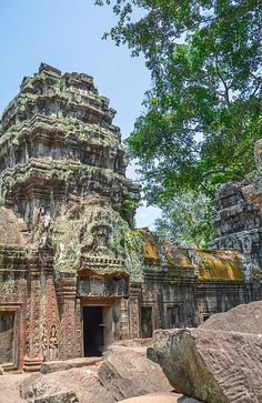"""""""Vistas at Ta Prohm Temple"""" by TravelPod blogger momentsintime from the entry """"The unreal Temple of Ta Prohm....Tomb Raider!"""" on Monday, March 10, 2014 in Angkor Thum, Cambodia"""