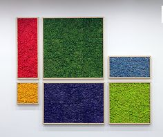 A truly green and sustainable way to add greens in your interior. This is called mineral preserved Cladonia Stellaris. Lab certified deodorization and acoustic absorption are some of its features. Maintenance is not required! Moss Wall Art, Moss Art, Island Moos, Garden Wall Designs, Organic Art, Decorative Panels, How To Preserve Flowers, Wall Decor, Gardens