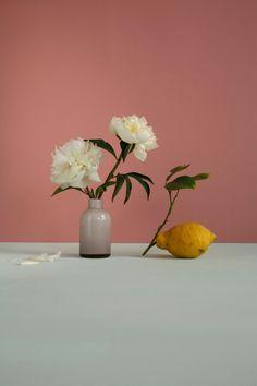 Citron et pivoine ©celinesaby
