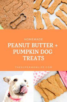 Homemade Peanut Butter and Pumpkin Dog Treats