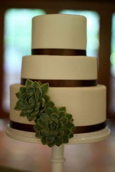 Succulent Wedding Cake..
