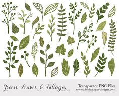 Green leaf and foliage cliparts LEAF & by PixeledPaperDesigns