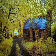 Ancient Forest Cottage, Stradbally, Ireland photo via lily. i could live in this quaint little cottage! Irish Cottage, Old Cottage, Cottage In The Woods, Cottage House, Italian Cottage, Witch Cottage, Tiny House, Forest Cottage, Forest House