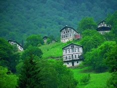 Rize, on the Black Sea coast of Turkey Istanbul, People Of Interest, Turkey Travel, Famous Places, Beautiful Places In The World, Black Sea, Nature Images, Amazing Nature, Art And Architecture