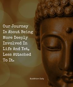 Buddha Quotes Inspirational, Zen Quotes, Study Quotes, Wise Quotes, Great Quotes, Quotes To Live By, Wise Sayings, Buddha Thoughts, Buddhist Quotes