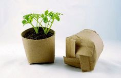 """Recycle """"potted"""" plant toilet paper roll holder reuse"""