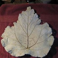 More detailed DIY leaf stepping stone, but the directions are not the best to read