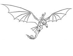 Look! Hiccup and his best friend Toothless are flying